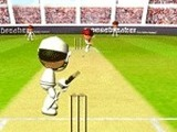 CRICKET 2