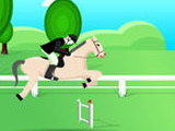HORSE JUMPER