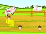 PIG RACE